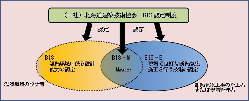 bis_system