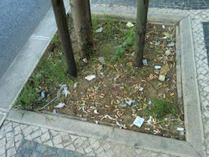 写真 4  歩道の植え込みは灰皿のようであった。