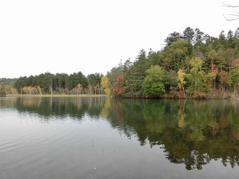 写真 2  オンネトー湖と周囲の紅葉